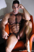 Built Bears, hairy bodybuilders naked.